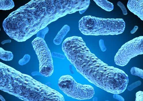 bacteria-blue
